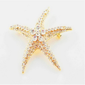 Zinc Alloy Metal Rhinestone Pentagram Design Eco-friendly Lead Free Brooch