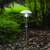 Amanda49 Best Quality 2-LED Super Bright White Light Solar LED Garden and Lawn Light (CIS-41221)
